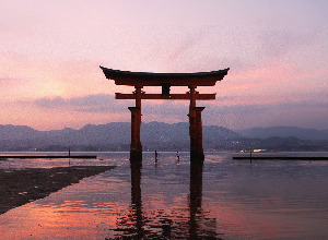 Return flights from Hamburg to Fukuoka - Japan for perfect price from 356 EUR