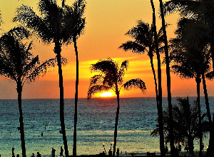 Return flights from Oslo to Honolulu - United States for perfect price from 516 EUR