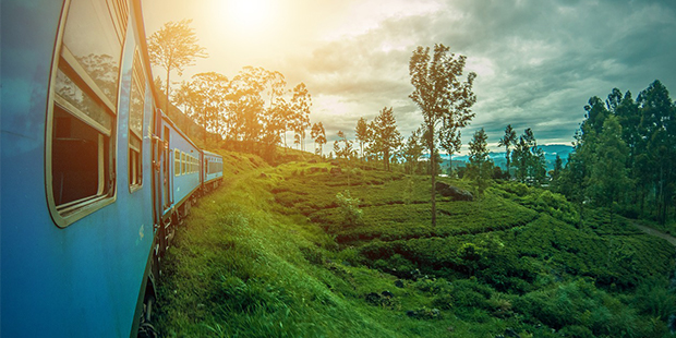 Cheap flights from Kiev Ukraine  to Colombo - Sri Lanka for only 362 EUR roundtrip.